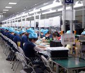 Hỗ trợ người lao động và người sử dụng lao động gặp khó khăn do đại dịch