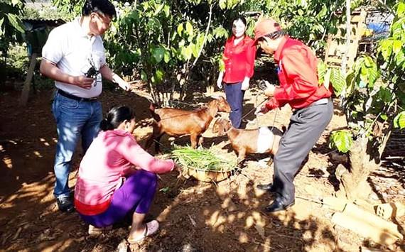 Lâm Đồng: Những mô hình nhân đạo góp phần xây dựng nông thôn mới