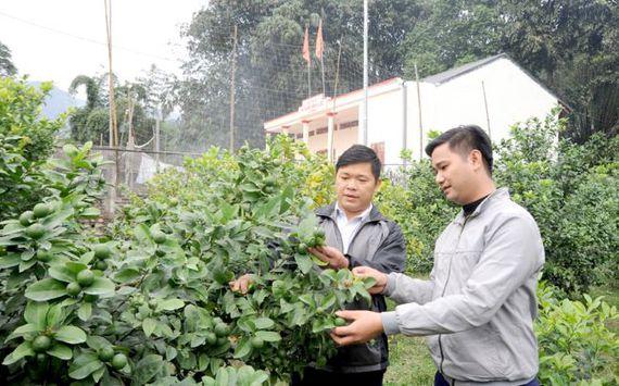 Công tác giảm nghèo để xây dựng nông thôn mới ở một huyện miền núi